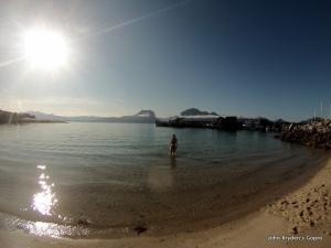 amelie swimming, fugloye,z